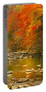 Autumn Stream Portable Battery Charger