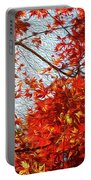 Autumn Sun Portable Battery Charger