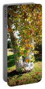 Autumn Sycamore Tree Portable Battery Charger