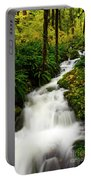 Autumn Torrent Portable Battery Charger