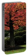 Autumn Tree At St Bernadette Portable Battery Charger