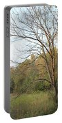 Autumn Tree At Sunset Light Portable Battery Charger