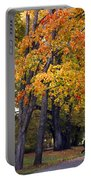 Autumn Trees In Park Portable Battery Charger