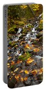 Autumn Tumbles Down Portable Battery Charger