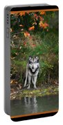 Autumn Wolf Study  Portable Battery Charger
