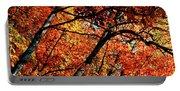 Autumn Wonder Portable Battery Charger