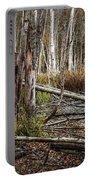 Autumn Woodland Marsh Scene Portable Battery Charger