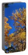 Autumn Yellow Foliage On Tall Trees Against A Blue Sky In Palermo Portable Battery Charger