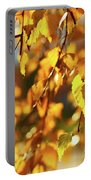 Autumnal Curtain Portable Battery Charger