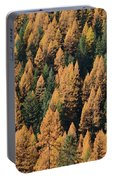 Autumnal Dance Portable Battery Charger