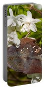 Autumnleaf Butterfly Portable Battery Charger