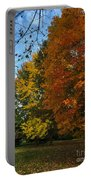 Autumn's Artwork Portable Battery Charger