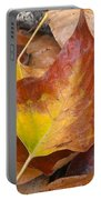 Autumns Color Palette Portable Battery Charger
