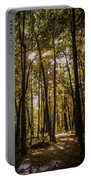 Autumns Fire Portable Battery Charger