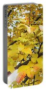 Autumns Gold Portable Battery Charger