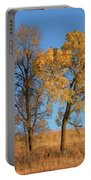 Autumn's Gold - No 1 Portable Battery Charger