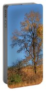 Autumn's Gold  - No 2 Portable Battery Charger