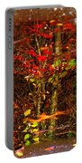 Autumns Looking Glass 2 Portable Battery Charger
