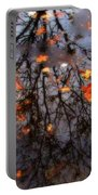 Autumns Looking Glass 3 Portable Battery Charger