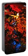 Autumns Looking Glass Portable Battery Charger