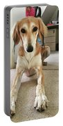 Ava On Her First Birthday #saluki Portable Battery Charger
