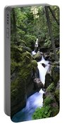 Avalanche Gorge Glacier National Park Portable Battery Charger