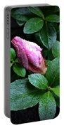 Awakening - Flower Bud In The Rain Portable Battery Charger