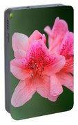 Azalea Blooms On A Green Background Portable Battery Charger
