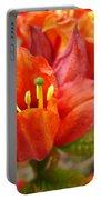 Azalea Flowers Art Prints Azaleas Gilcee Art Prints Baslee Troutman Portable Battery Charger
