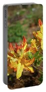 Azalea Greets The Morning Sun Portable Battery Charger