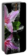 Azalea Times  Two Portable Battery Charger