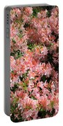 Azalea Wall Portable Battery Charger