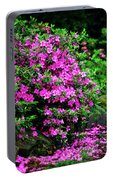 Azalea Waterfall At The Azalea Festival Portable Battery Charger