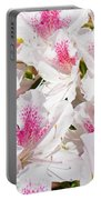Azaleas Flowers Pink White Azalea Floral Baslee Troutman Portable Battery Charger