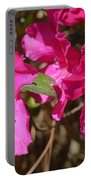 Azaleas In Magenta Portable Battery Charger