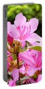 Azaleas Pink Azalea Flowers Artwork 12 Landscape Art Prints Portable Battery Charger