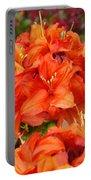 Azaleas Rhodies Art Prints Azalea Flowers Giclee Baslee Troutman Portable Battery Charger