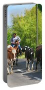 Azorean Farmer Portable Battery Charger