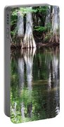 Babcock Wilderness Ranch - Alligator Lake Reflections Portable Battery Charger