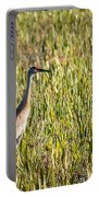 Babcock Wilderness Ranch - Sandhill Crane Portable Battery Charger
