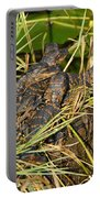 Baby Alligators Portable Battery Charger