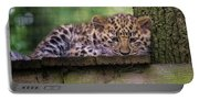 Baby Amur Leopard Portable Battery Charger