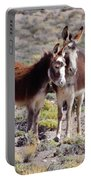 Baby And Mama Burro Portable Battery Charger