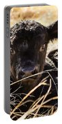 Baby Angus Calf Hideaway Portable Battery Charger