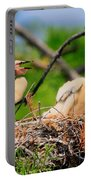 Baby Anhinga Chicks Portable Battery Charger