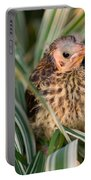 Baby Bird Hiding In Grass Portable Battery Charger