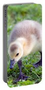 Baby Canada Goose Portable Battery Charger