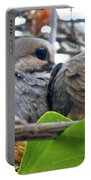 Baby Doves 2 Portable Battery Charger