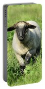 Baby Ewe Portable Battery Charger