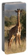 Baby Giraffe Portable Battery Charger